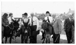 history 15 donkey rides - small